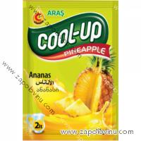Cool Up Instantní nápoj Ananas 10g